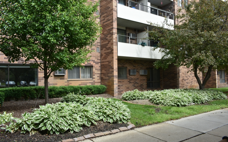 920 On the Park exterior and plantings