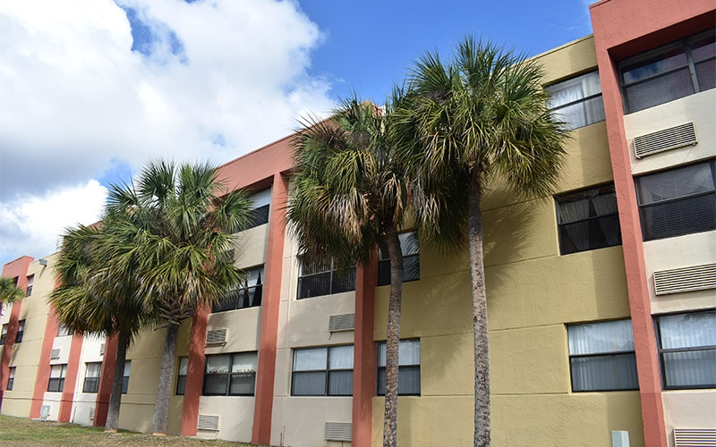 Cutler Meadows Glen Apartments exterior with palm trees