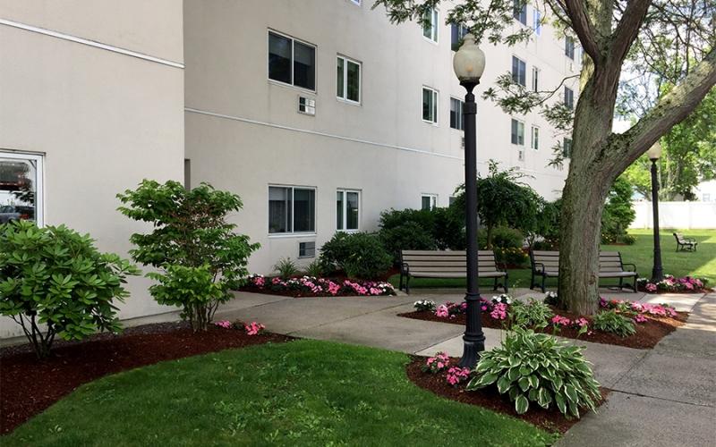 Chestnut Gardens exterior plants