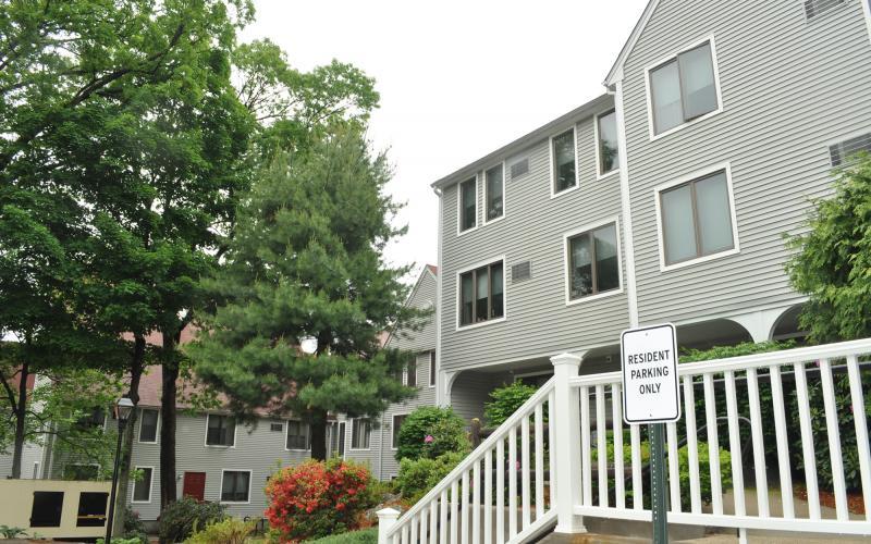 Machado House exterior and trees